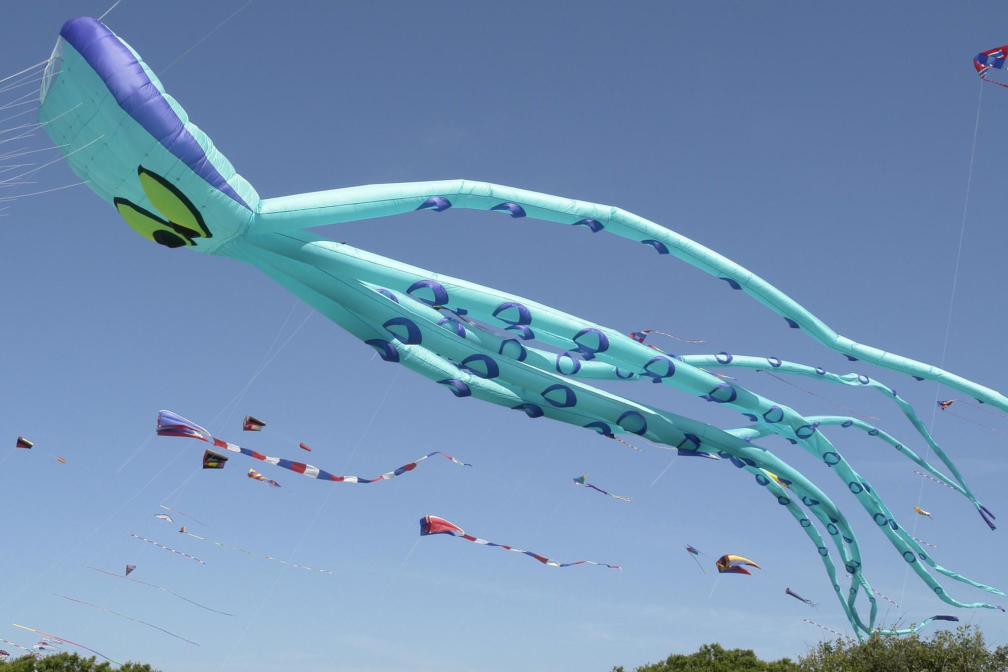 Newport Kite Festival